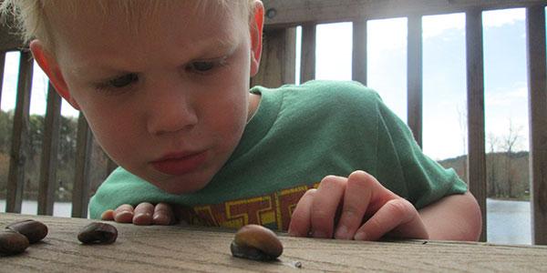 boy_snail